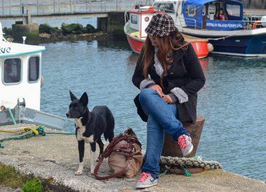 Island Pier Harbour, Rathlin Island Ferry Day Trip from Ballycastle