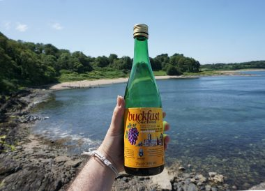 Buckfast Tonic Wine in Bangor Northern Ireland Coastal Path